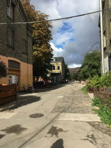 Gator Christiania