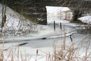 En grå men vacker vinterdag i Fors för några år sedan