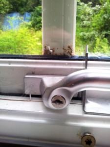 Ett bedrägligt sommarlugn. Fönsterhandtaget tillfälligt spärrat med ett vinkeljärn och en tjock plastskiva fastskruvad på insidan i väntan på fönsterbyte