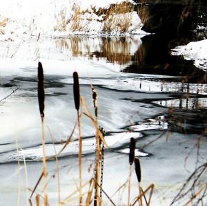 Forsån i Dalarna i vinterskrud får symbolisera att framtiden känns hoppfull.