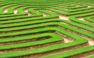 Grön Due Diligence skyddar naturvärden.